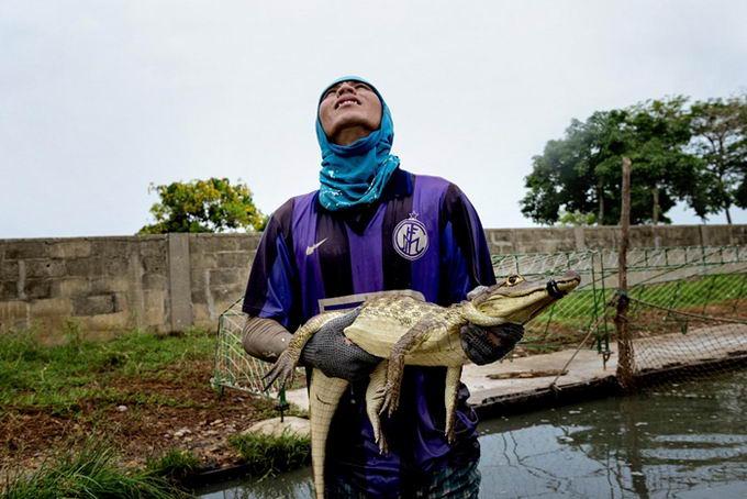 leather-crocodile-01