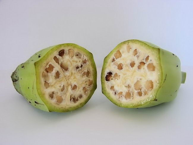 ancient-fruits-and-vegetables-10
