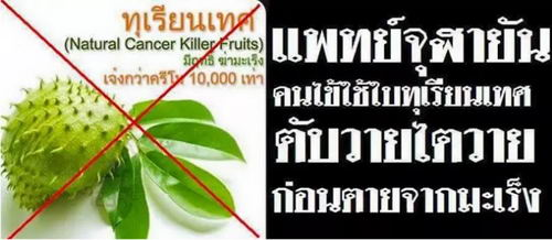 chimerical-thailand-07